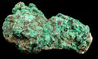 "4.5"" Malachite on Matrix - Morocco For Sale, #57056"