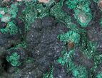 "3.5"" Malachite on Matrix - Morocco - #57054-2"