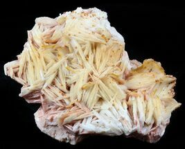 Vanadinite on Barite - Fossils For Sale - #57264
