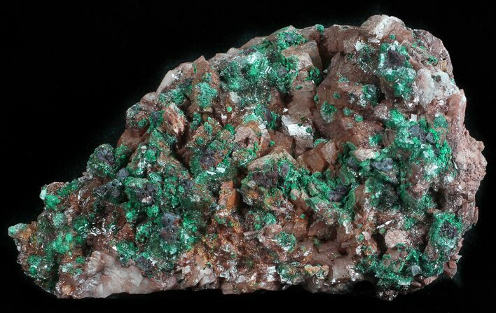 "3"" Malachite, Selenite and Ferroan Dolomite Association - Morocco"