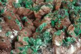 "3"" Malachite, Selenite and Ferroan Dolomite Association - Morocco - #57365-1"