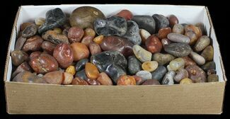 Carnelian - Fossils For Sale - #59601