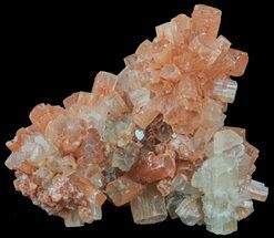 Aragonite - Fossils For Sale - #59793