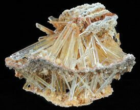 "4.2"" Selenite ""Sandwich"" - Lubin Mine, Poland For Sale, #60779"