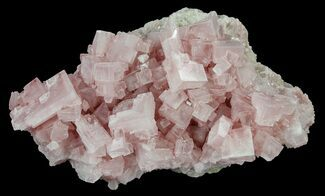 Halite - Fossils For Sale - #61062