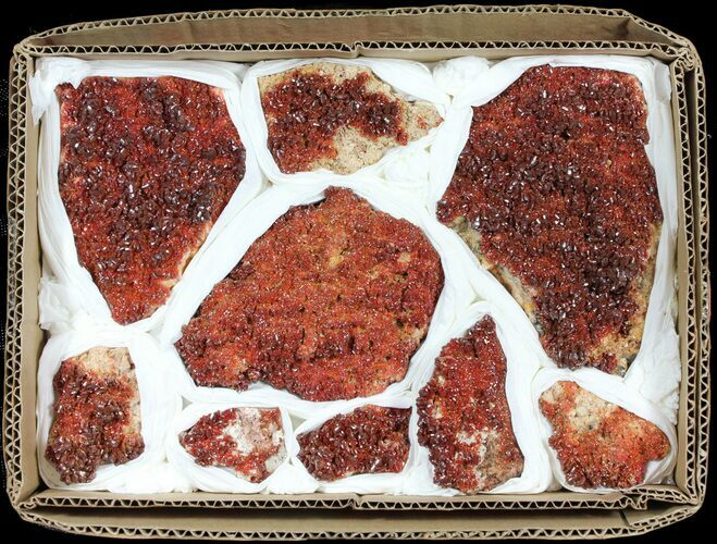 Flat: Ruby Red Vanadinite Crystals on Barite - 9 Pieces