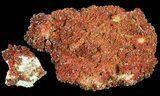 Flat: Ruby Red Vanadinite Crystals on Barite - 9 Pieces - #61632-1