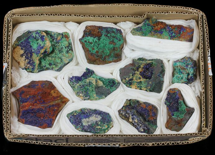 Vibrant Azurite From Morocco (Wholesale Lot) - 10 Pieces