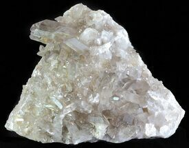 Quartz var. Smoky - Fossils For Sale - #60765