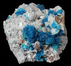 "3.1"" Exceptional Cavansite on Stilbite - India For Sale, #62987"
