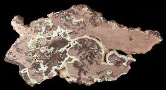 "Buy 7.3"" Polished Copper Ore Slab - Northern Australia - #63094"