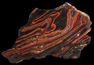 Tiger Iron Stromatolite - Fossils For Sale - #64008