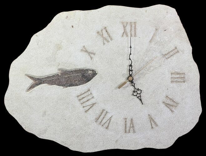 "19"" Wide Clock With Natural Fossil Fish - Wyoming"
