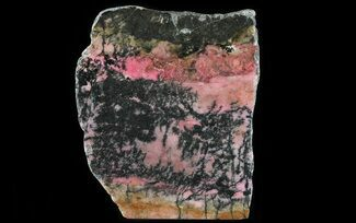 "7.4"" Polished Rhodonite Section (Free-Standing) - Australia For Sale, #64793"