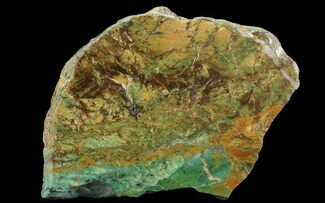 "Buy 5.9"" Opalised Serpentine Slab - Western Australia - #64882"