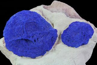 Azurite - Fossils For Sale - #64284