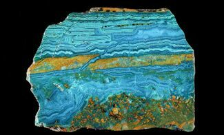 Chrysocolla & Malachite - Fossils For Sale - #64926