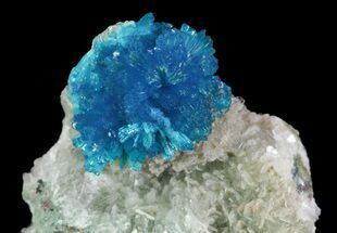 Buy Vibrant Blue Cavansite Cluster on Stilbite - India - #64795