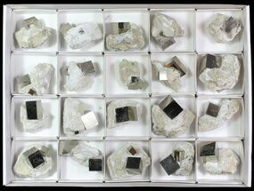 Buy Natural, Pyrite Cubes In Rock From Spain (Wholesale Flat)  - 20 Pieces - #65674