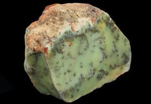 Dendritic Opal - Fossils For Sale - #65418