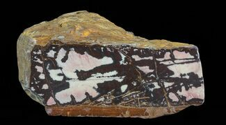 "5.2"" Polished Outback Jasper - Western Australia For Sale, #65378"