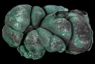 Malachite - Fossils For Sale - #67449
