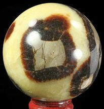 "Buy 2.5"" Polished Septarian Sphere - Madagascar - #67864"