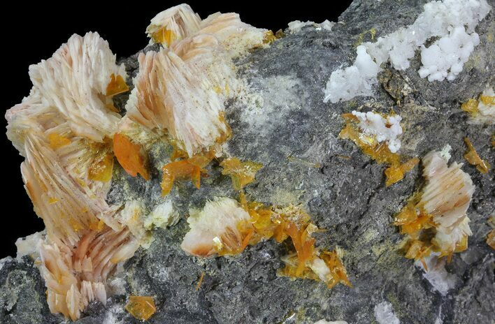 "3.8"" Wulfenite, Barite, Cerussite and Galena Association - Morocco"