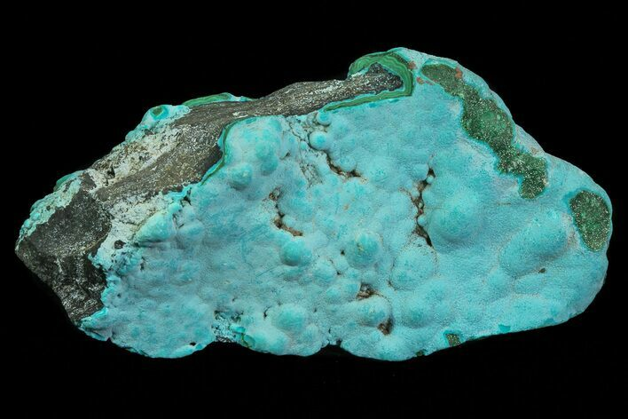 "3.2"" Botryoidal Chrysocolla and Malachite - Congo"