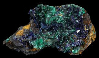 Azurite & Malachite - Fossils For Sale - #69690