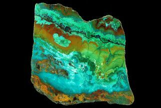 "2.6"" Polished Chrysocolla & Plume Malachite - Bagdad Mine, Arizona For Sale, #69527"