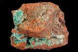 "3.3"" Fibrous Rosasite and Selenite Association - Mexico - #69488-3"