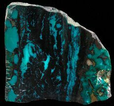 "Buy 1.6"" Polished Chrysocolla & Plume Malachite - Bagdad Mine, Arizona - #69493"