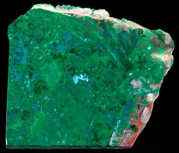 "1.5"" Polished Plume Malachite - Bagdad Mine, Arizona"