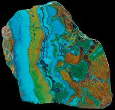 Chrysocolla & Malachite - Fossils For Sale - #69504