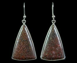 "1.2"" Agatized Dinosaur Bone (Gembone) Earrings - Sterling Silver For Sale, #69965"
