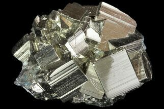 Pyrite - Fossils For Sale - #69594