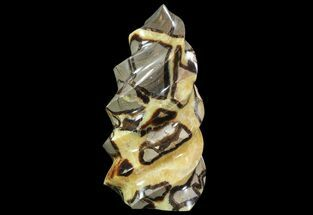 "Buy 11.1"" Polished Septarian ""Twist"" Sculpture - 13 lbs - #71377"