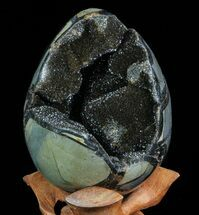 "Buy 4.8"" Septarian ""Dragon Egg"" Geode - Black Crystals - #71986"