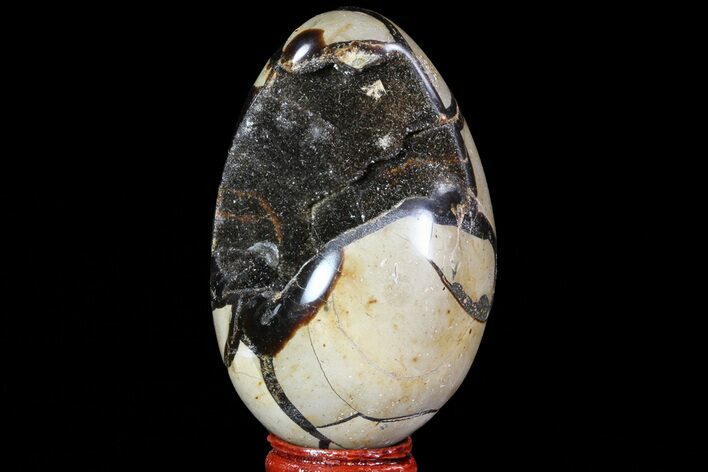 "3.4"" Septarian ""Dragon Egg"" Geode - Black Crystals"