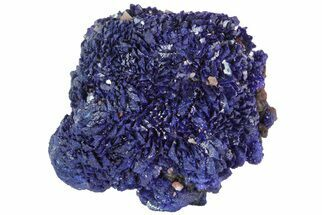 Azurite - Fossils For Sale - #73428