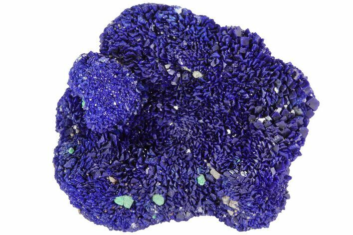 "1.4"" Sparkling Azurite and Malachite Crystal Cluster - Morocco"