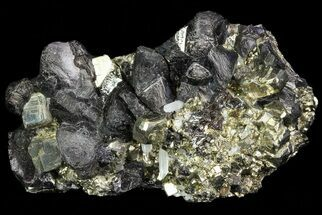 Sphalerite, Pyrite & Quartz - Fossils For Sale - #72585