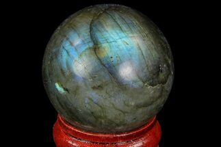 "1.3"" Flashy Labradorite Sphere - Great Color Play For Sale, #74627"