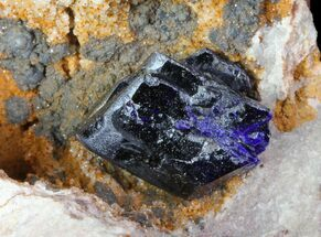 Azurite  - Fossils For Sale - #74685