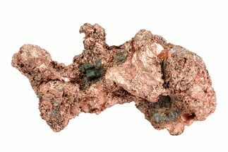 Copper - Fossils For Sale - #76887