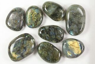 Labradorite - Fossils For Sale - #77280
