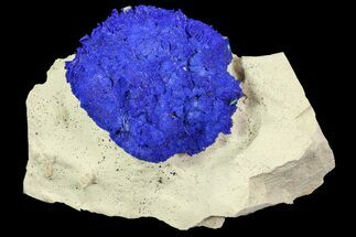 "Buy 1.5"" Brilliant Blue Azurite Sun - Australia - #77635"