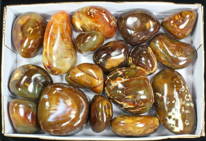 Wholesale Lot: 23 Lbs Polished Carnelian Agate - 17 Pieces