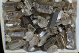 "Wholesale Lot: 26.5 Lbs Smoky Quartz Crystals (2-4"") - Brazil - #77842-2"
